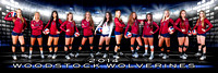WHS Volleyball 2014 Team Banner (BLUE) 3'x9'