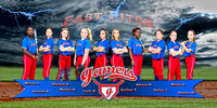 Elite Gamers Softball Banner
