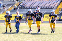 Sequoyah Gold vs woodstock White 5th