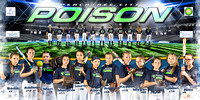 Peachtree City Poison 4'x8' Team Banner